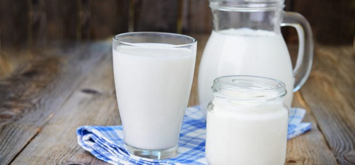 Drupe Foods India Launches Lactose-Free Vegan Milk in India